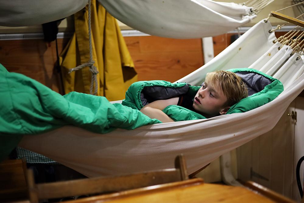 In the hammocks